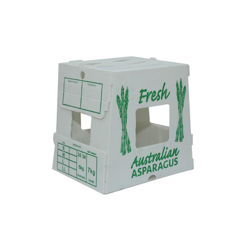 L'agriculture en plastique ondulé met en boîte des récipients pour la conception de couleur de taille faite sur commande de légumes pour l'emballage ou la circulation